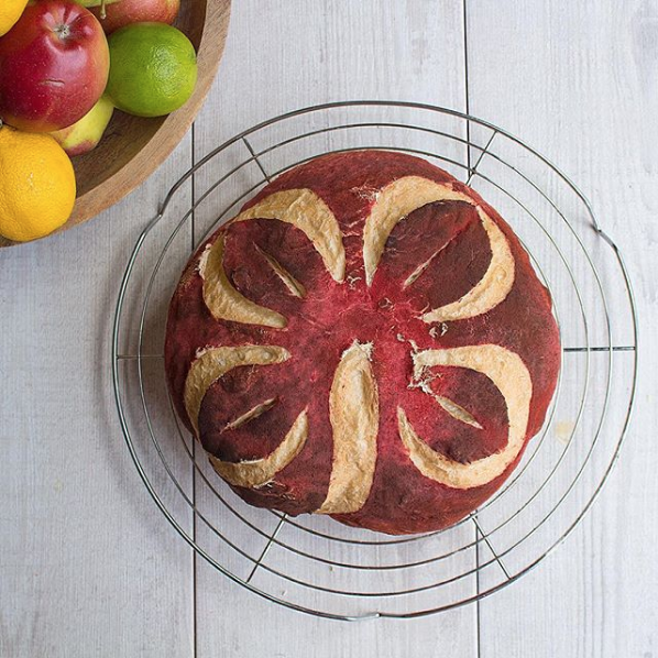 Beet powder covered loaf, scored with a clover leaf pattern