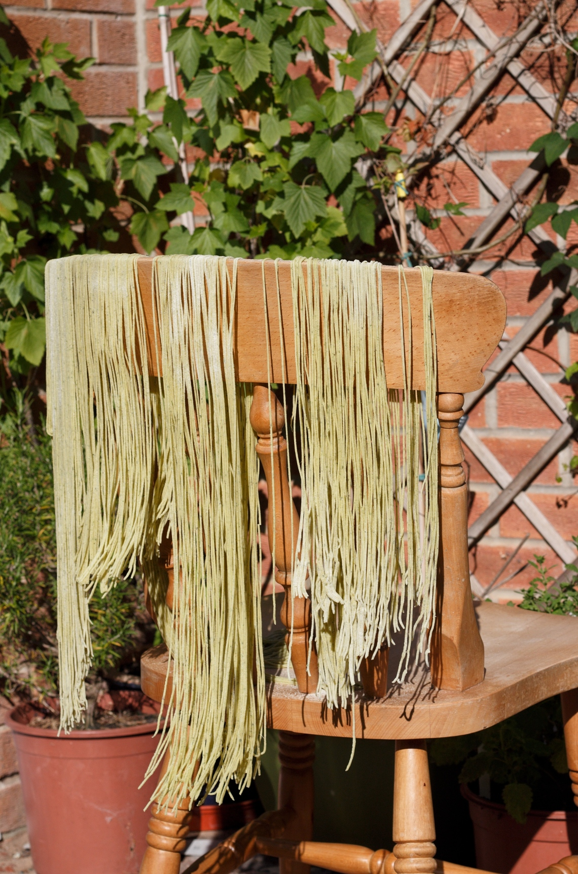 bloody dock pasta - copyright image Lynn Clark - inksugarspice