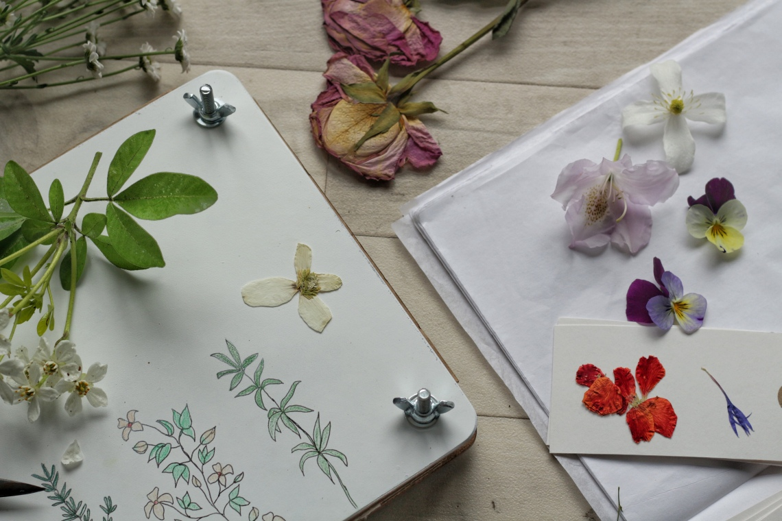 Making a flower press | Ink Sugar Spice blog